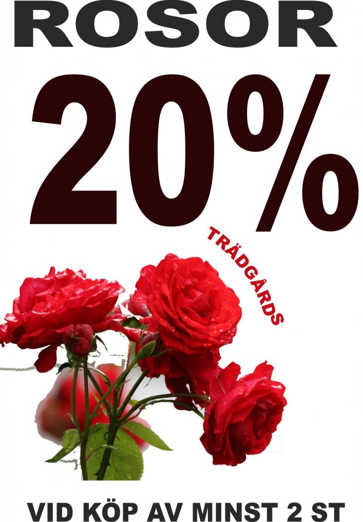 rosor 20%